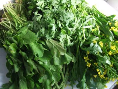 2009_1031自家菜園野菜その3