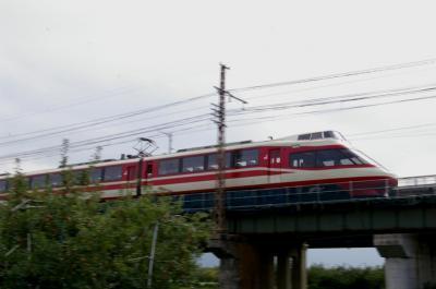IMGP3375.jpg