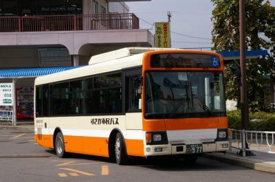 IMGP3378.jpg