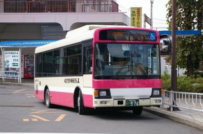 IMGP3381.jpg