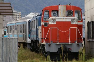 IMGP3513.jpg