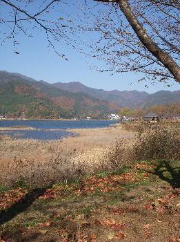2007-11-24-6.jpg