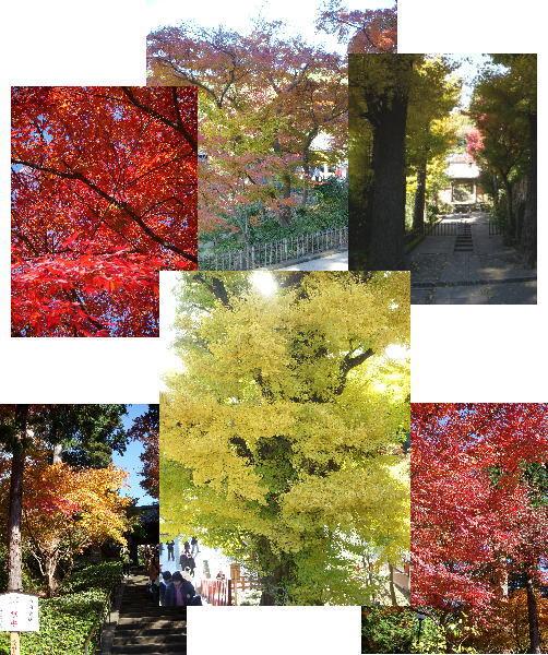2007-12-5-1.jpg