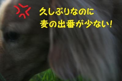 2011092311