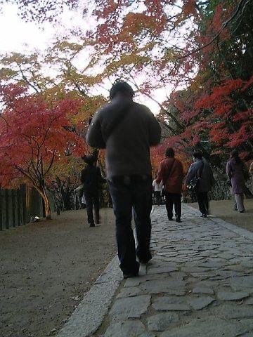 20071124-23.jpg