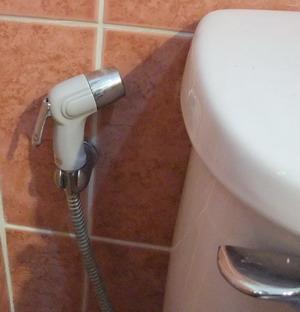1-toilet