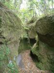 moss gorge