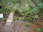 苔の洞門展望階段