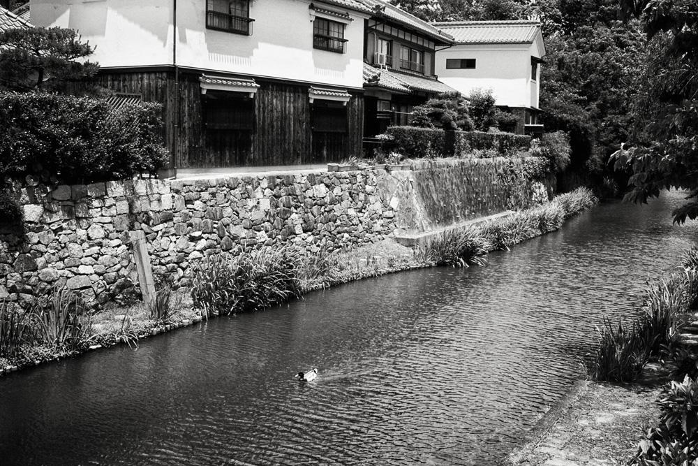 近江八幡11