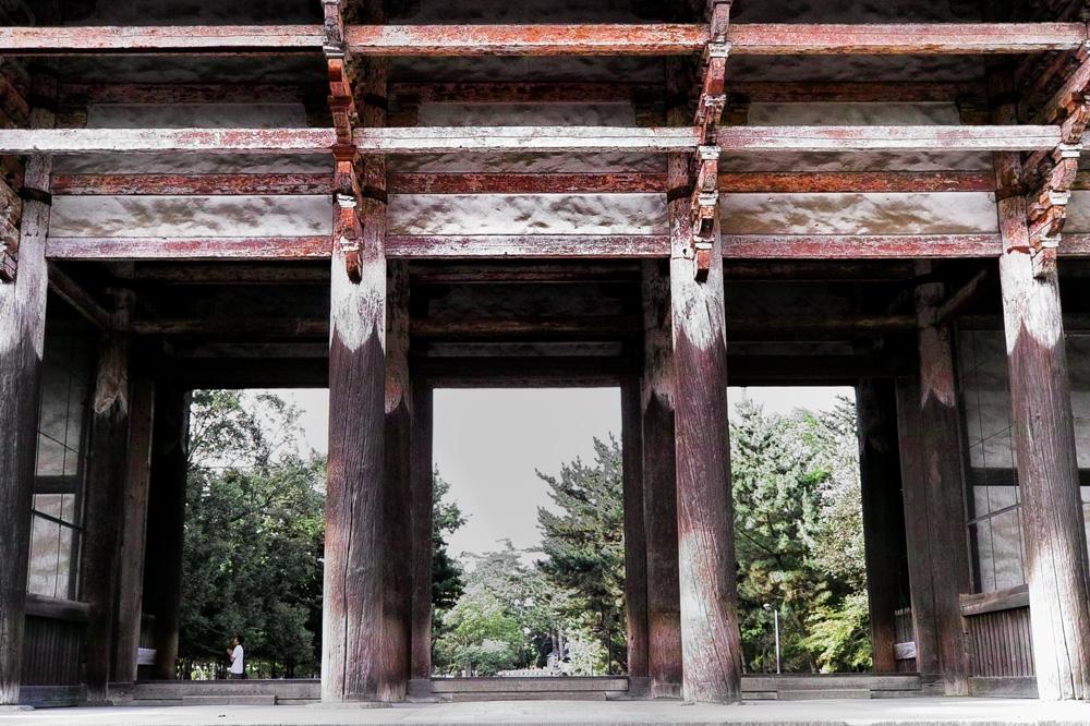 奈良公園06