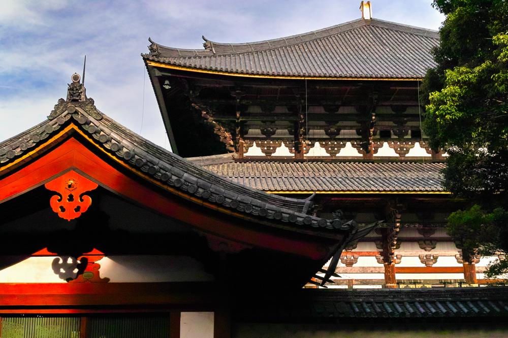奈良公園07