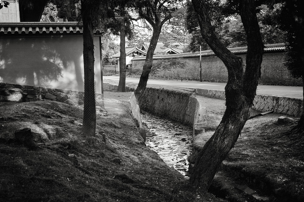奈良公園01