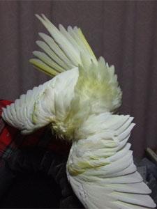 20071223-5.jpg