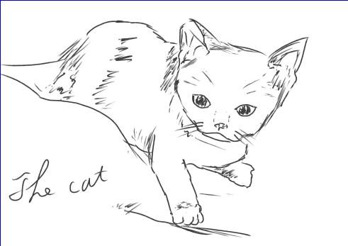 練習絵2_cat