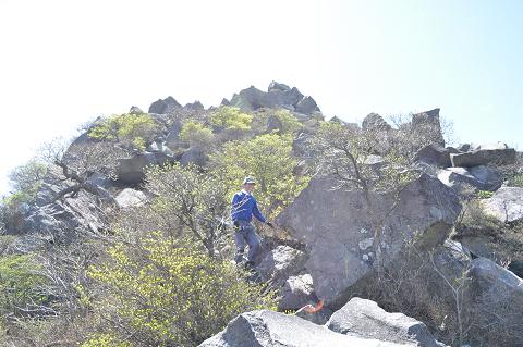 11.5.14黒岳 (88)s