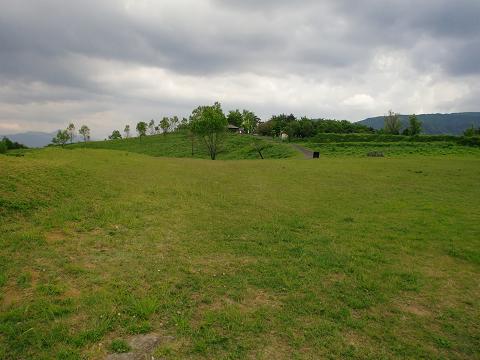 伐株山 (19)