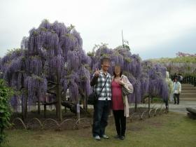 2011flowerpark1.jpg