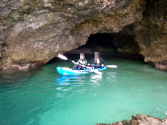 石垣島でマングローブカヌーと青の洞窟シュノーケルツアー!