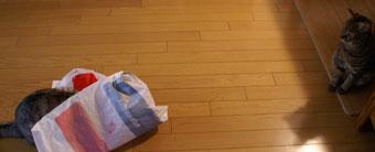 ビニール袋4