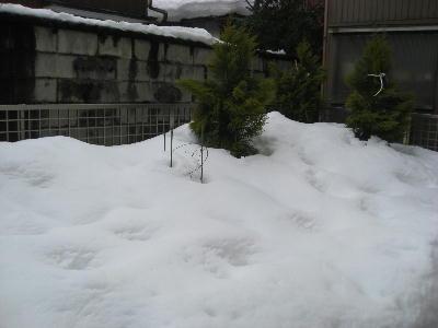 雪庭 003