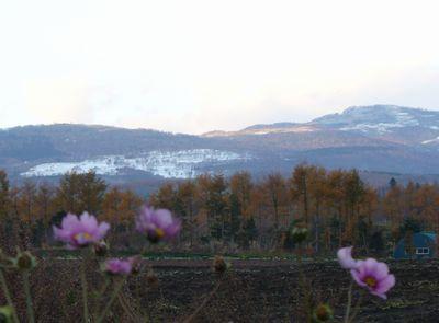 横津岳の雪1