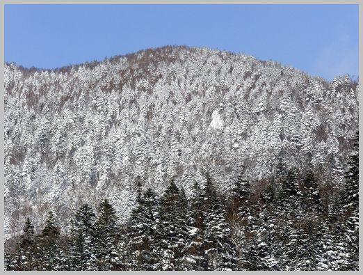 中山峠の山