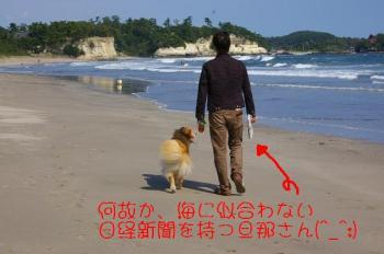 お散歩中。。。