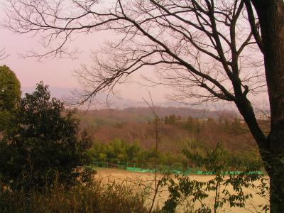 縮小 2011.03.15景色①
