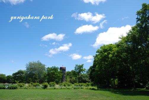 park14-8.jpg