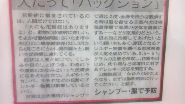 moblog_d7ea7c7b.jpg