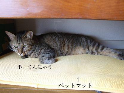 07_20090924171051.jpg