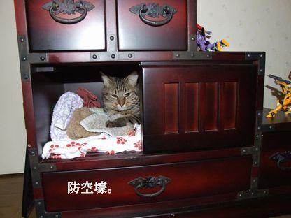 1_20091008175925.jpg