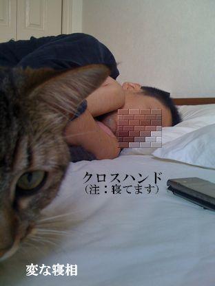 6_20091006153443.jpg