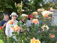 kawaguchisenseiflower