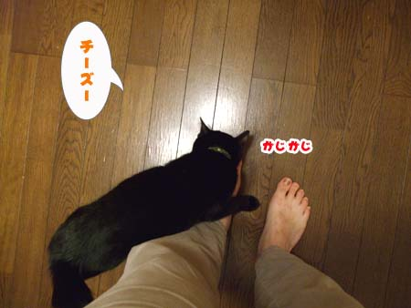 071130-3.jpg