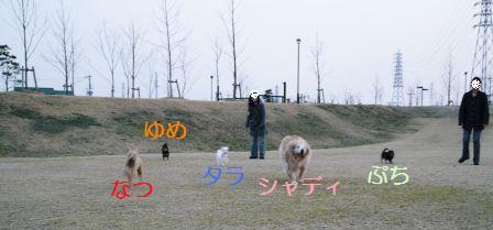 2008年03月06日_P1010269