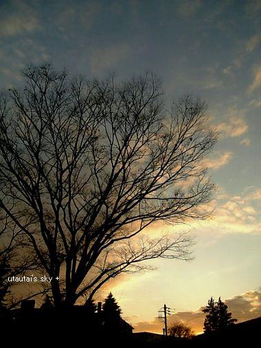 sky222