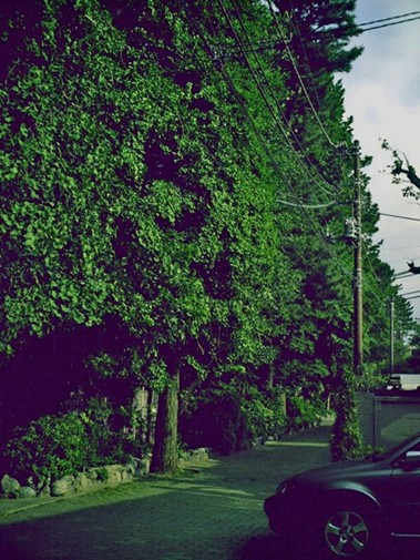 PICT0017_edited.jpg