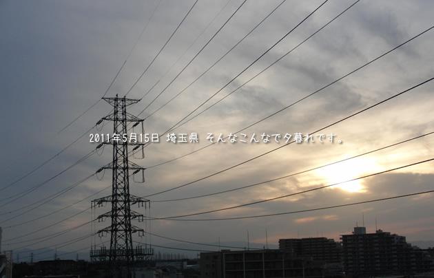 20110515_11.jpg