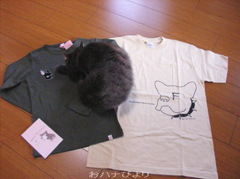 Tシャツ②