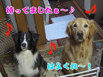 IMG_0114w4.jpg