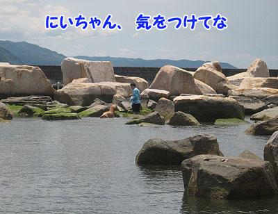 IMG_0255w4.jpg