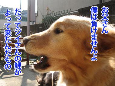 IMG_0527w4.jpg