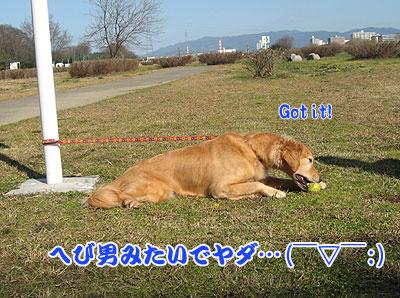 IMG_0591w4.jpg