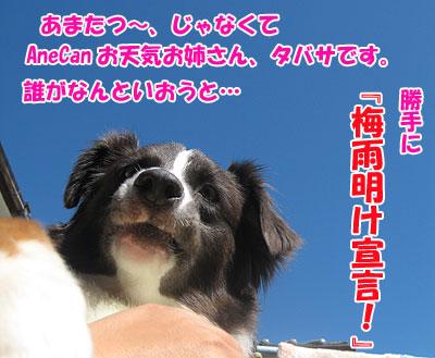 IMG_0716w4.jpg