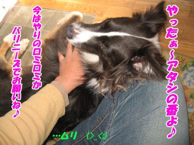 IMG_3224w4.jpg