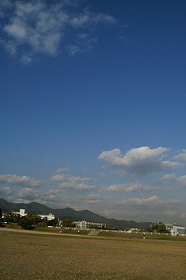 PICT0048w4.jpg