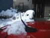 h22.12.26大雪の被害(涙) のコピー.jpg