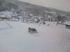 h22.12.26また大雪(会社にて03) のコピー.jpg