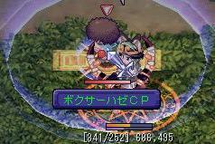 20060303boxerhazeCP.jpg